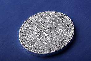 mince_294